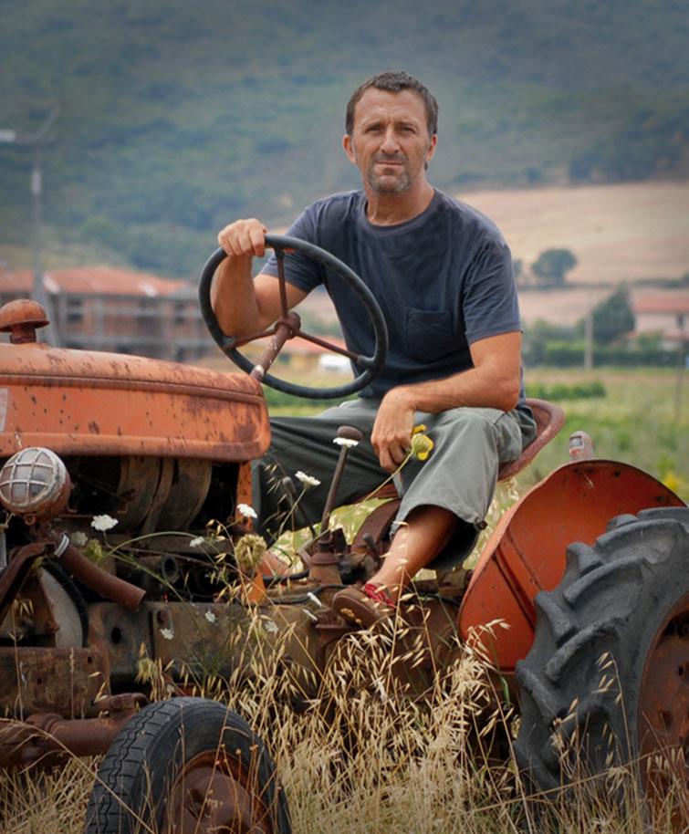 Stefano Boschi - Il boschetto